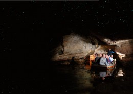 grottes-vers-luisants-te-anau-real-journeys